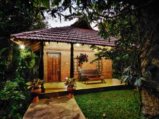 wild woods spa and resort - Bhatkal vacation rentals