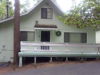 2 BR / 2 BA Twain Harte Gem!  Sleeps 4-6 - Shaver Lake vacation rentals