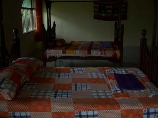 Extra Extra Large  Zanzibar Country Side Room - Zanzibar Archipelago vacation rentals