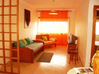 Peniche Beach Apartment - Peniche vacation rentals