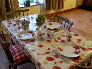 Central, Bright and Spacious Period House Apt - Cork vacation rentals