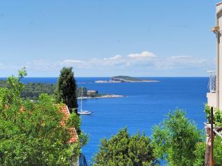 Villa Guanita - Cavtat vacation rentals
