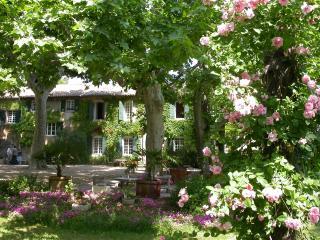 Domaine de Rhodes - Bed & Breakfast - Avignon vacation rentals
