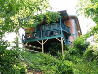 Mystic Mountain Nottely Riverfront Chalet - Hayesville vacation rentals
