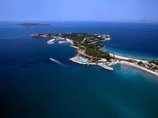 * ELEGANT AND CHIC APARTMENT IN CULTURAL ATHENS * - Kalamaki vacation rentals