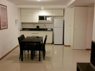 In Montevideo, excellent apartmente near the beach - Montevideo vacation rentals