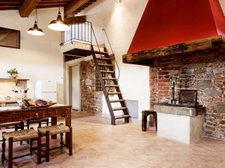 L'Uva Fragola, apartment in Tuscan Farmhouse - Lucignano vacation rentals