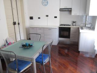 Apartment Velia close to Amalfi coast - Santa Maria di Castellabate vacation rentals
