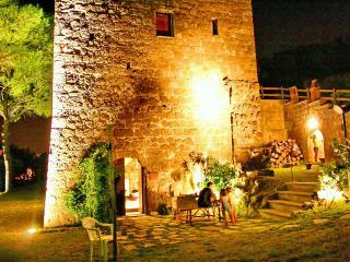 DIMORA LA TORRE - Tuscania vacation rentals