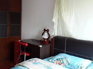 Down town Guangzhou  metro&riverside nice room - Guangdong vacation rentals
