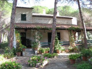 villa Pola with sea view Santa Margherita di Pula - Santa Margherita di Pula vacation rentals