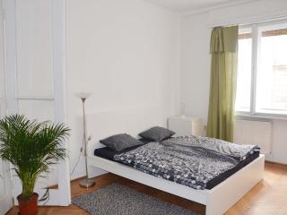 Dohany/Kazinczy corner - Budapest vacation rentals