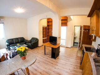 One-Bedroom Apartment with Balcony - Sofia vacation rentals