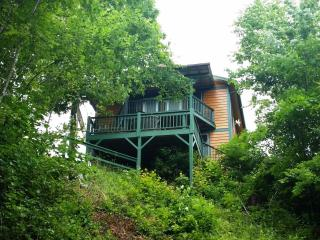 Mystic Mountain Nottely Riverfront Chalet - Warne vacation rentals