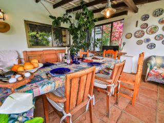 Rustic villa in Fuengirola, Costa del Sol - Fuengirola vacation rentals