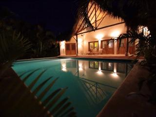 Villa 4 PALMAS - Las Terrenas vacation rentals