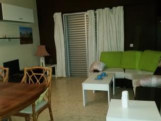 ALOHA GOLF APARTMENT - Puerto José Banús vacation rentals