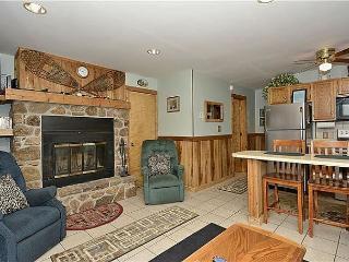Northwoods F2 - Canaan Valley vacation rentals