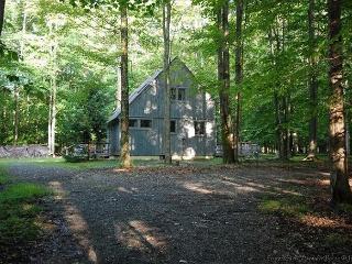 Timberhill Lodge - Davis vacation rentals