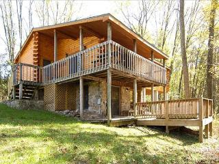 Windsong Dryfork - Canaan Valley vacation rentals