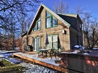 Creekside Cabin - Davis vacation rentals