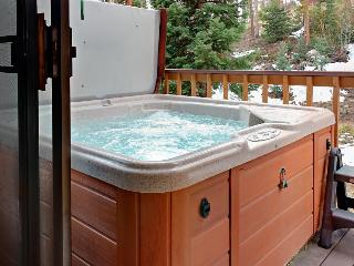 Townhouse w/ hot tub & jet tub, views of Continental Divide - Winter Park vacation rentals