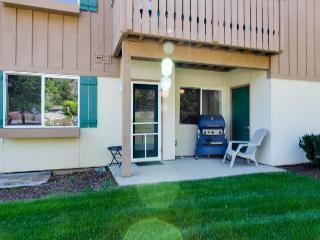 Alpine Village Summit Haus - Leavenworth vacation rentals