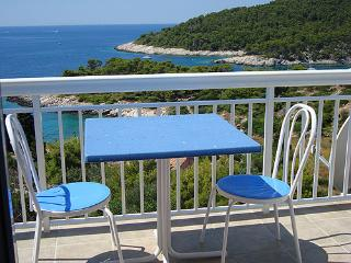 Apartment on the top with panoramic sea view 2+2 - Cove Zarace (Milna) vacation rentals