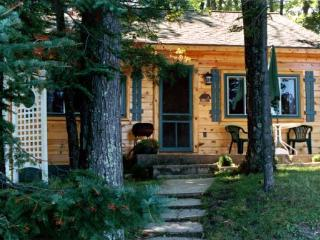 Cozy Lake Front Cabin in Lake City MI - Lake City vacation rentals