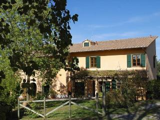 PODERE TORRE - Palaia vacation rentals
