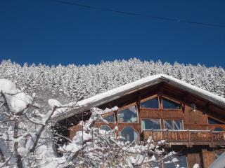 Chalet Savoie Faire - La Lechere vacation rentals