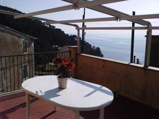 Terrace overlloking the sea near