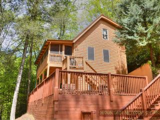 Dragonfly, Relaxing Mountain Stream - Ellijay vacation rentals