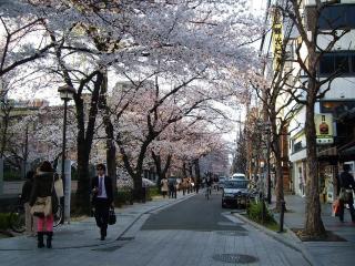 Kyoto Nice Apartment Shijo Karasuma - Kyoto vacation rentals