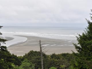 Fabulous beach view cabin, close to Ocean Shores! - Ocean Shores vacation rentals