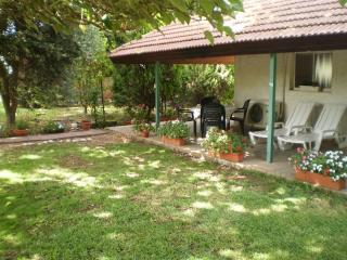 At Our Yard - Vacation Apartment in upper Galilee - Kerem Ben Zimra vacation rentals