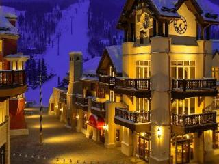 Luxe Apartment with View on Vail Ski Slopes Featuring Stone Fireplace, Balconies and Jacuzzi - Vail vacation rentals