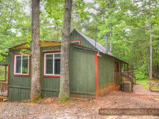 Cozy Cohutta Cottage  Bargain w/ Hot Tub - Ellijay vacation rentals