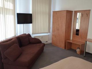 Vacation Apartment in Oelsnitz - central, quiet (# 8505) - Unterwürschnitz vacation rentals