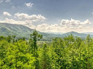 5BR/4.5BA Sleeps 16 - Beary Viewtiful - Pigeon Forge vacation rentals