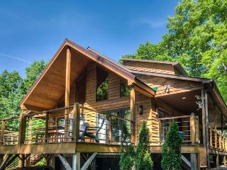 White Wolf Cabin - Swannanoa vacation rentals