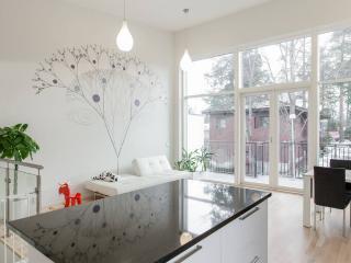 Amazing new design house 150m2! - Espoo vacation rentals