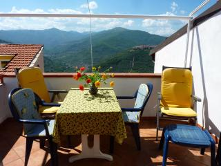 Rustic and spacious flat in Liguria with balcony and panoramic views - Chiusanico vacation rentals