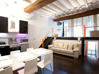 Centrally Located Vacation Apartment in St. Germai - Paris vacation rentals