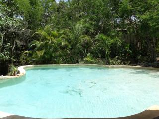 Room Amarillo 3 pers/Pool and Cenote - Chemuyil vacation rentals