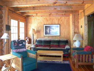 Lakefront Log Cabin Retreat - Clarksville vacation rentals