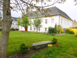 Hohe Schule-Exclusive (4-7 Prs) central in Austria - Loosdorf vacation rentals