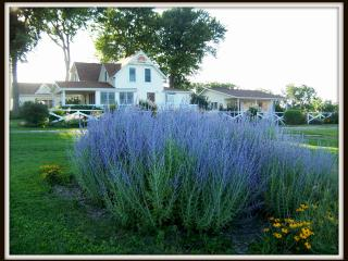 The Garden Cottage at Meadowlark Ridge - Viroqua vacation rentals