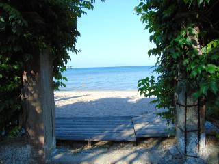 Beach front apartment  for families 4 persons - Moraitika vacation rentals