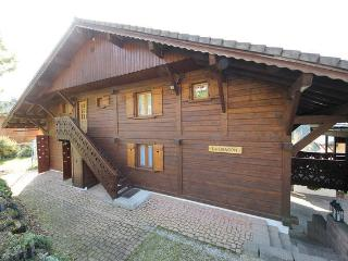 Chalet Le Dragon Ski Chalet - Chatel vacation rentals